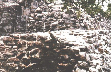 The Iguana on the Pyramid